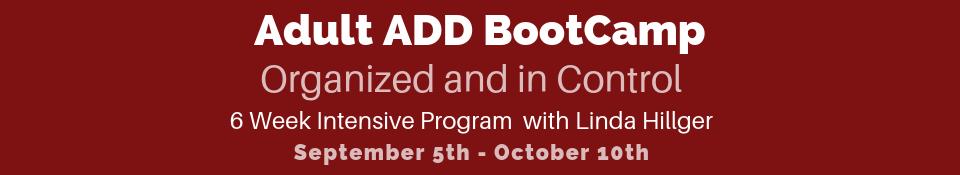 Adult ADD ADHD BootCamp Organized and in Control